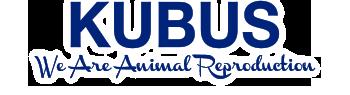 Kubus - Logo Pixelabs Case Study